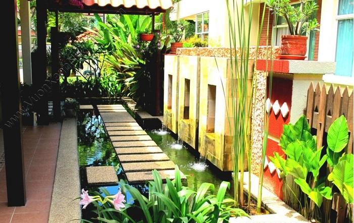 Ý tưởng để xây dựng hồ cá Koi đẹp trong nhà và ngoài trời